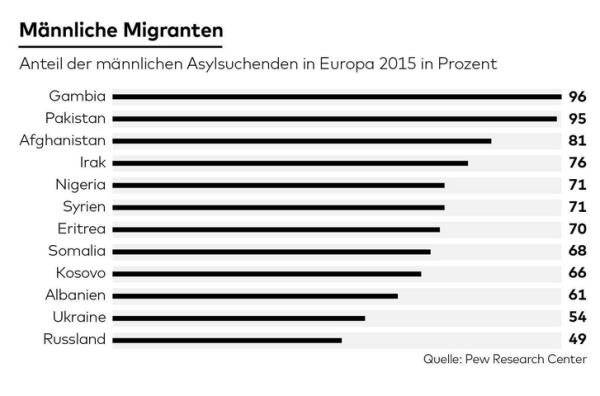 männl einwanderer 2015.PNG