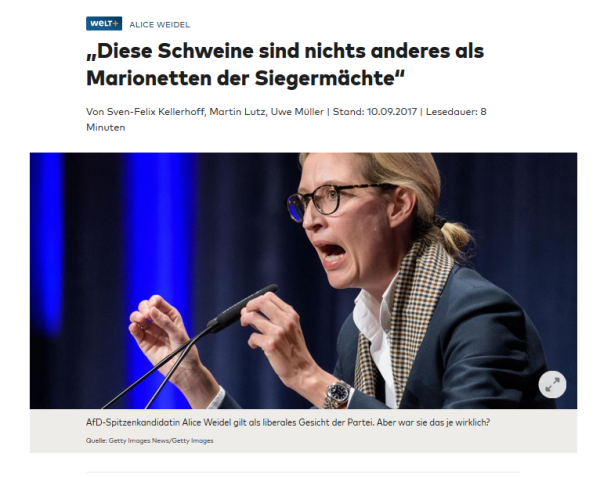 weidel welt e mail.PNG